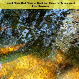 Good Noise Bad Noise vs Duet For Theremin & Lap Steel - Live Manatees