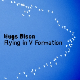 Hugs Bison - Flying in V Formation